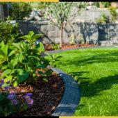 tazscapes-calgary-native-shrubs