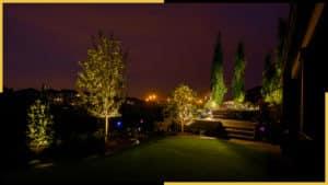 Outdoor Landscape Lighting Aesthetics